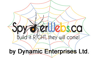 Dynamic Enterprises Ltd - SpydWebs.ca