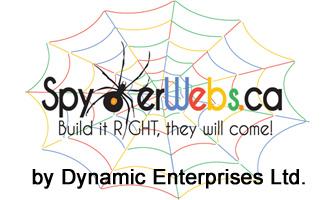 Dynamic Enterprises Ltd - SpydWebs.ca